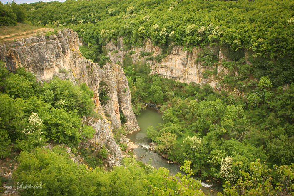 Canionul Emen