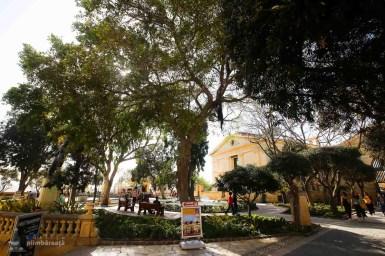 Vacanta City Break Malta_065