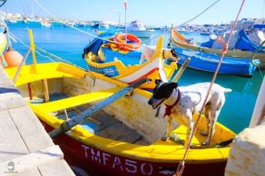 Vacanta City Break Malta_131