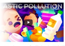 warum plastik umweltproblem