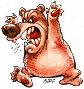 FinW-070711-Bear