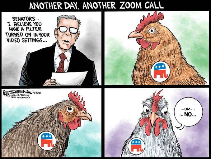 Senate Zoom Filters by Kevin Siers, The Charlotte Observer, NC