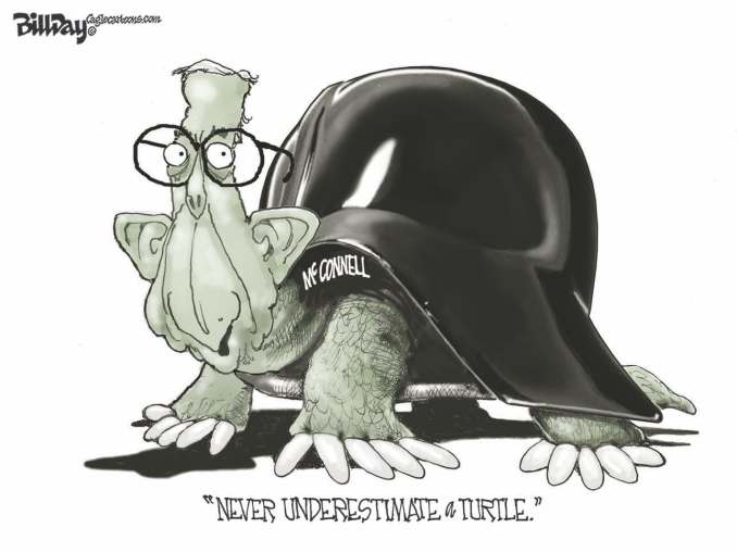 Turtle McConnell by Bill Day, FloridaPolitics.com