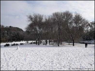2012, Febr. - Scott park, Rome