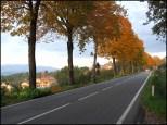2012, Nov.- Country road near Arezzo, Tuscany