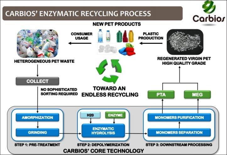 Proses Depolimerisasi Plastik oleh Teknologi Carbios