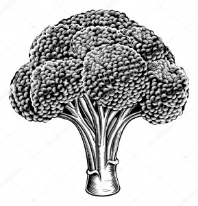 Σαλάτα πέννες φακής με ψητό μπρόκολο