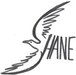 Logo Shane