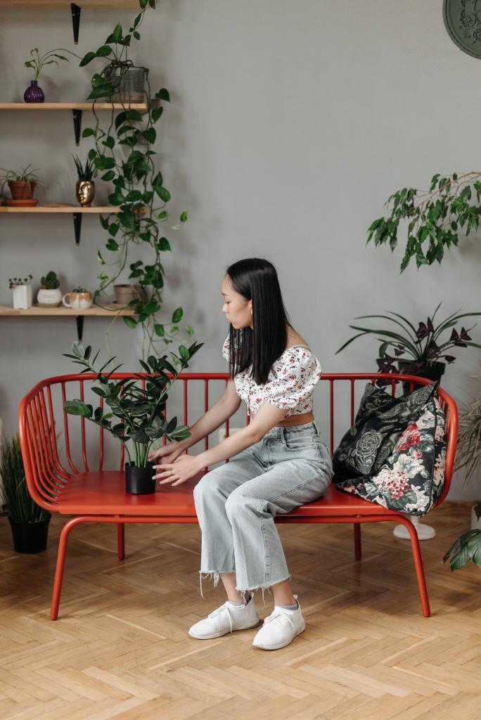Feng Shui Como incluir plantas na sua casa seguindo a prática 05 Vision Art NEWS