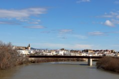 Bro med god utsikt