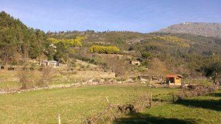 Cortes de Baixo - Natureza Serra