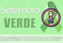 Setembro verde - Casadaptada