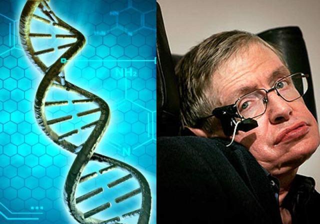 Stephen Hawking - Fotos: Pixabay e divulgação
