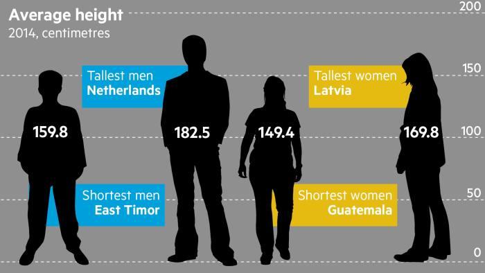 Average Height.jpeg