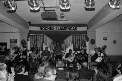 Noche Flamenca en nuestra entidad