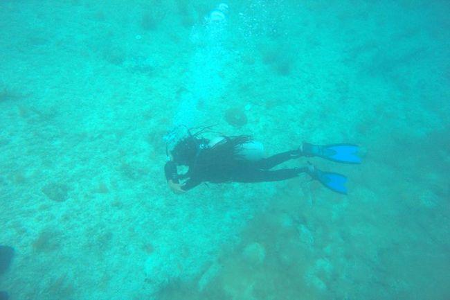 mairobi diving bayahibe