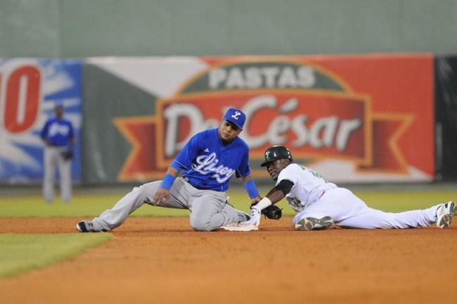 Dominican Baseball League 5