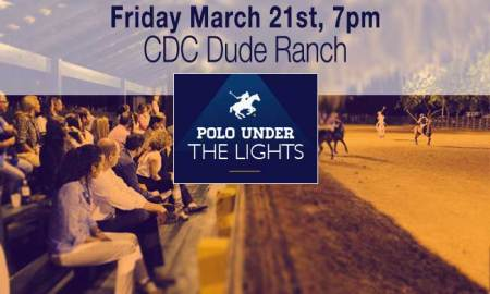 Polo under the Lights