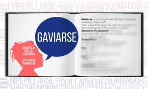 Dominican Dictionary Gaviarse