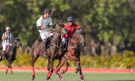 Polo Challenge RD 2017
