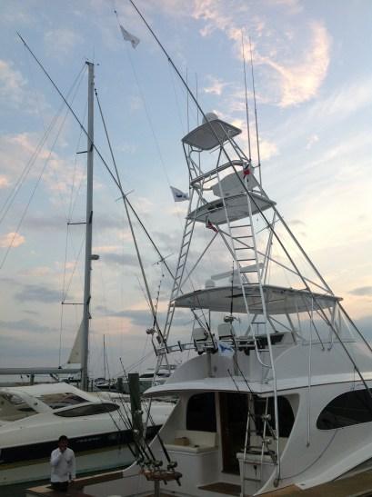 "Fishing vessel ""Shoe""   2/3 Blue Marlin, 1 Sailfish"