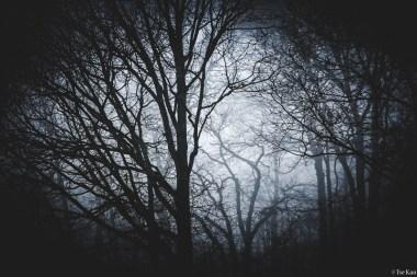 kao-fog-7633