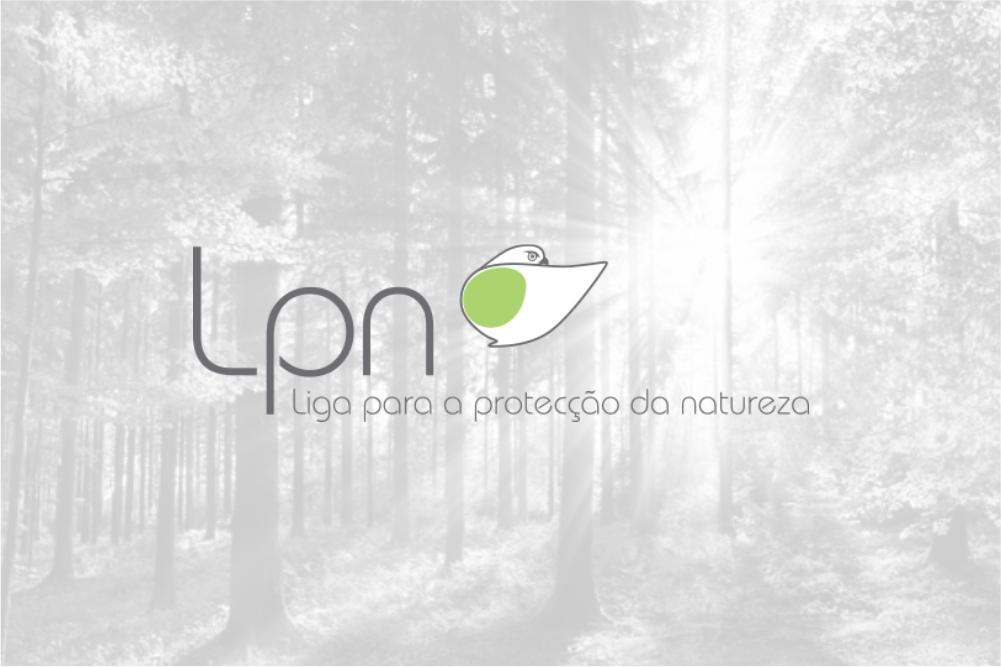 Parceria LPN