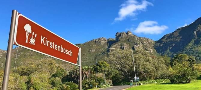 Kirstenbosch, o Jardim Botânico de Cape Town
