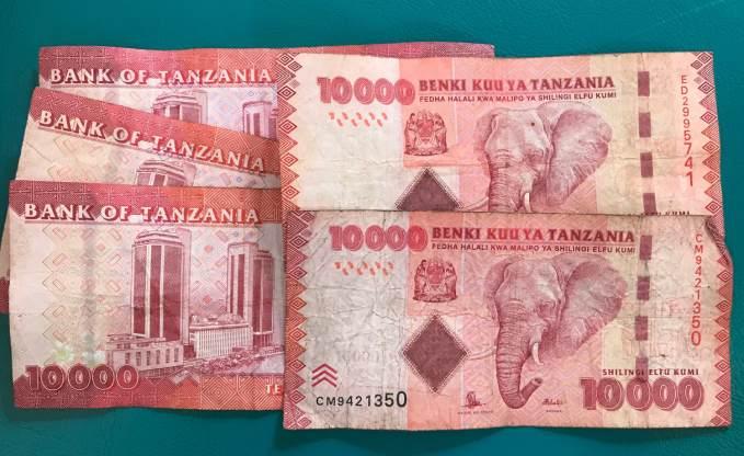 Moeda da Tanzânia