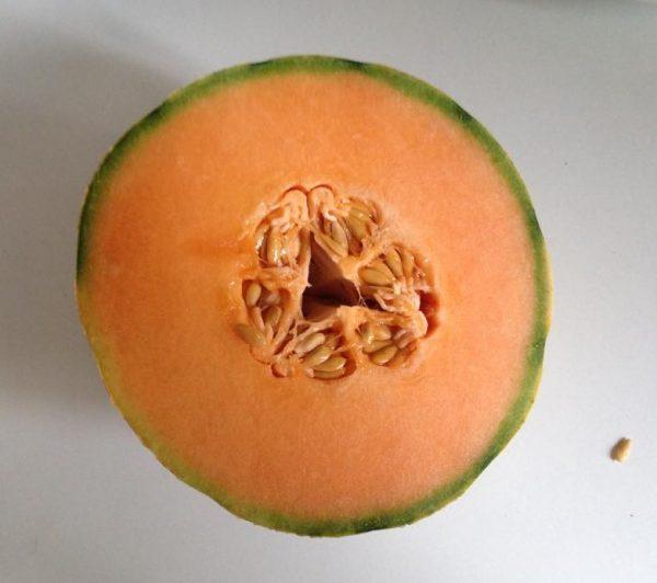 fresh cantaloupe melon