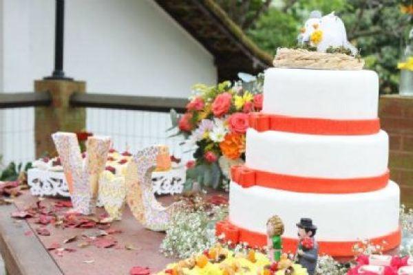 casamento-economico-faca-voce-mesmo-sitio-rio-de-janeiro-de-manha (22)