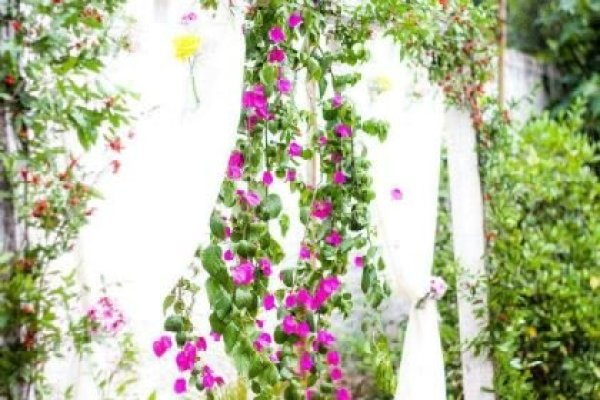 casamento-economico-mini-wedding-decoracao-com-flores-faca-voce-mesmo-rustico-romantico (19)