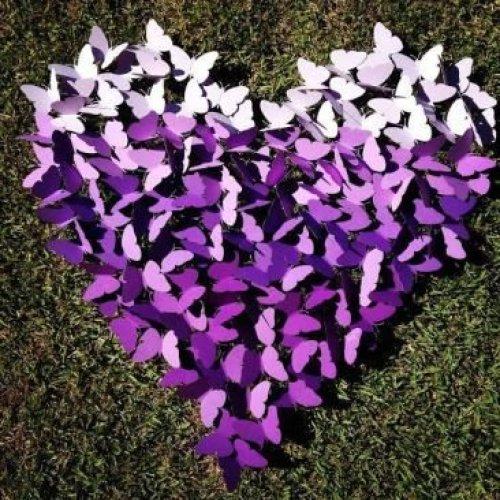 coracao-de-borboletas-
