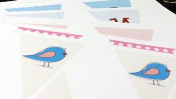 noivado-flavia-luis-henrique-passarinhos (8)