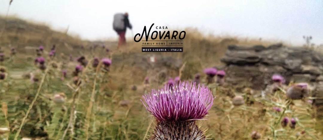casanovaro-slide-vacanza-montagna