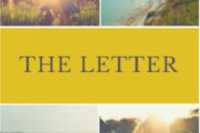 Free Book - The Letter By Ann Newhouse