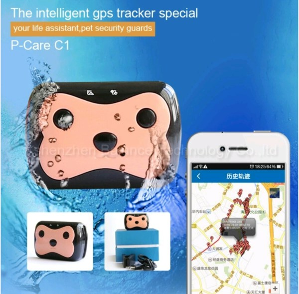 Coleira GPS 1