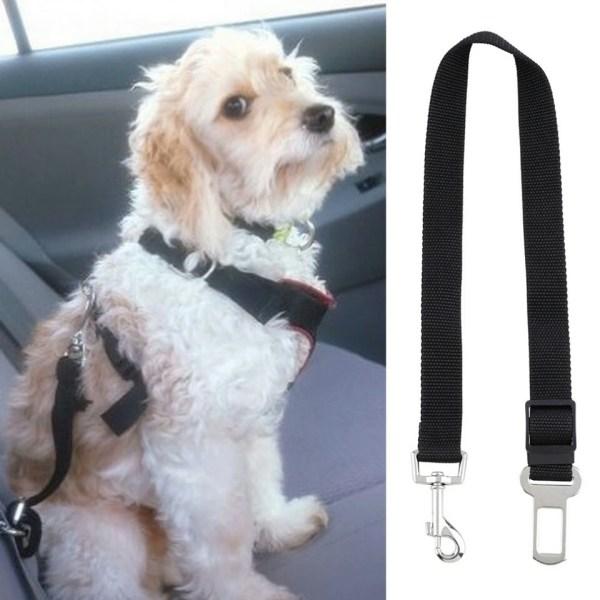 Cinto de segurança para cão 1