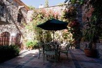 Cactus garden 4