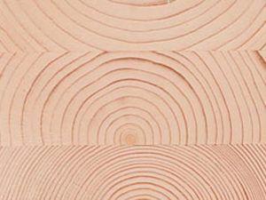Aislamiento térmico de la madera Casas Carbonell