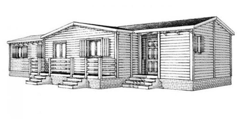 Melocotonero de Casas Carbonell (9)