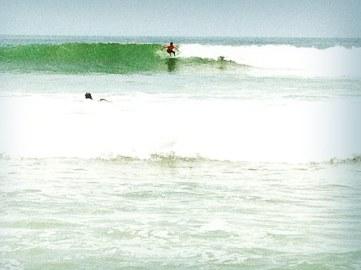 casa-selvatica-surf-contest-1