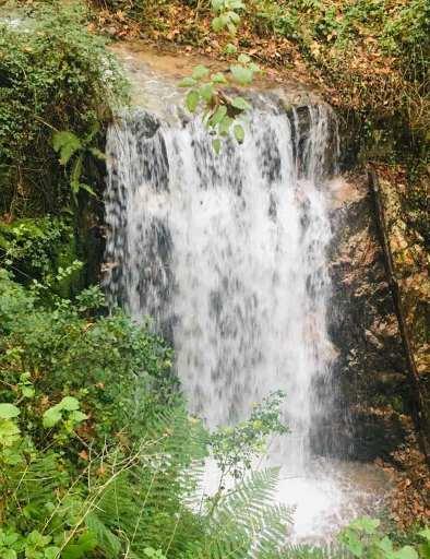 Cascada en Montseny
