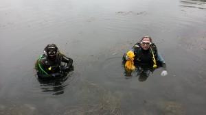 Nettoyages étangs de Cergy 2014
