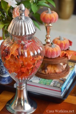 fall leaves in apothecary jar and pumpkins