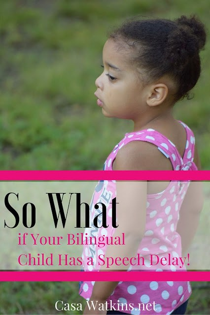 Great post on the mother's perspective of speech delays in her bilingual child.