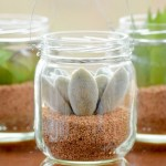 DIY-Mini-Hanging-Succulent-Jars-From-Baby-Food-Jars