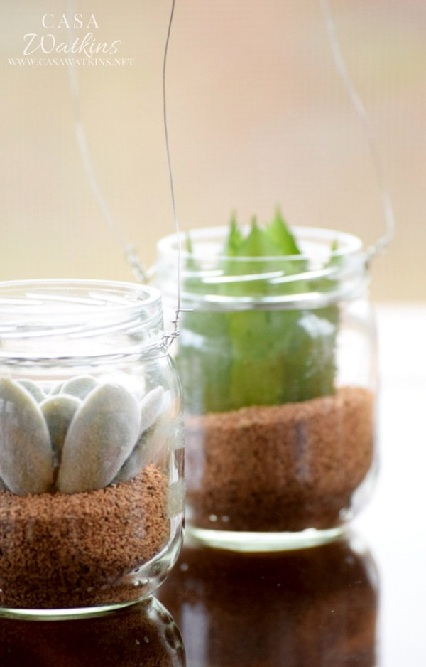Create these hanging mini succulent jars with recycled baby food jars!
