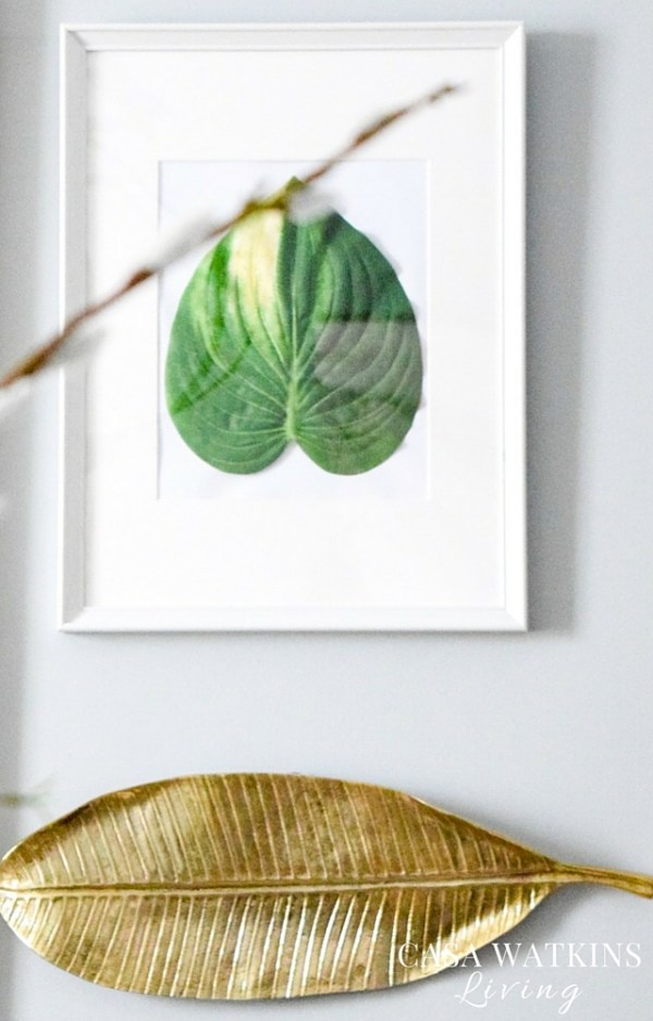Create simple gallery wall with framed palm leaves and hanging gold trays