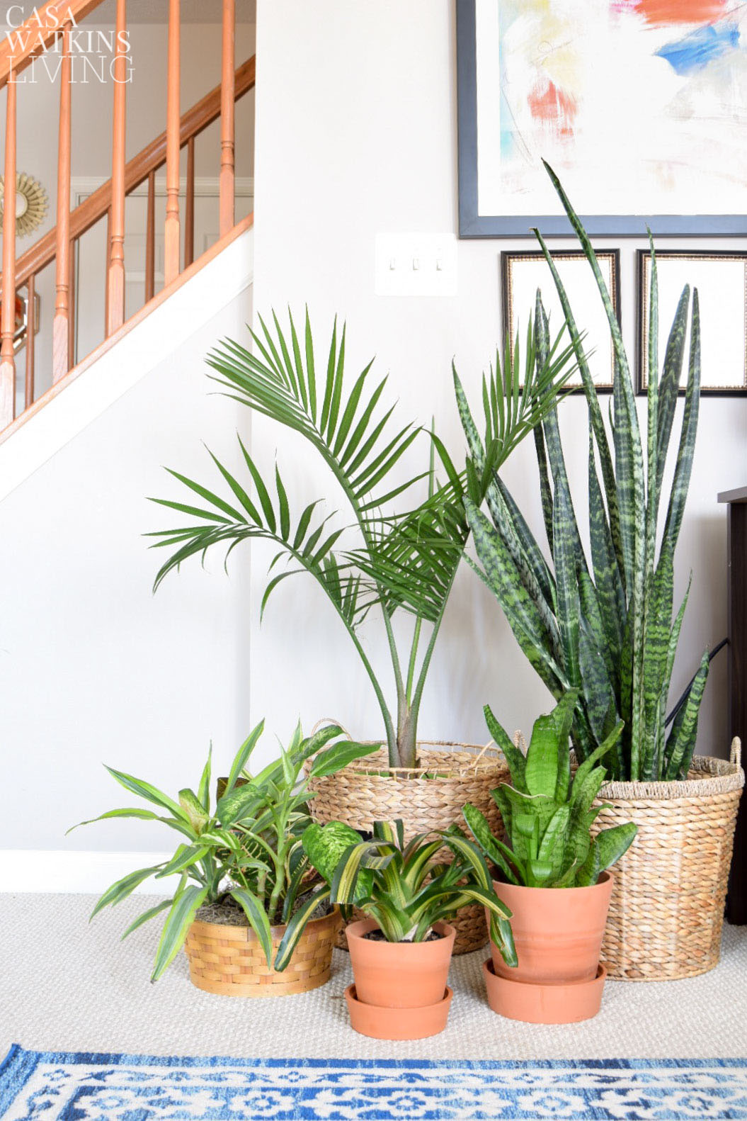 Use large woven baskets for house plant planters